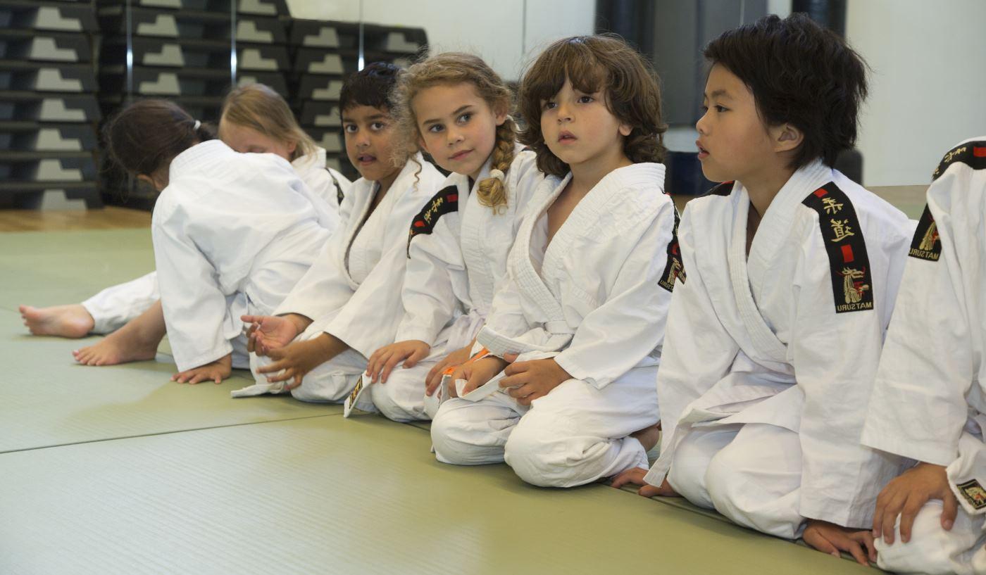 Mulder judo